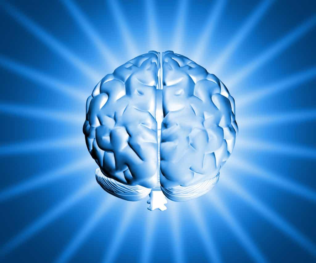 Lingua italiana e cervello