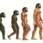 Istinto, intuizione, intelligenza naturale ed artificiale, stati evolutivi dell'Homo sapiens