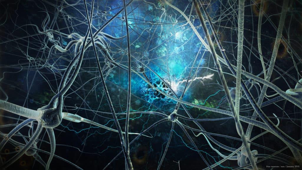 Sensazione, Percezione, Consapevolezza