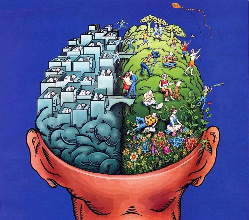 La Stupefacente Immagine del Mondo nel Cervello