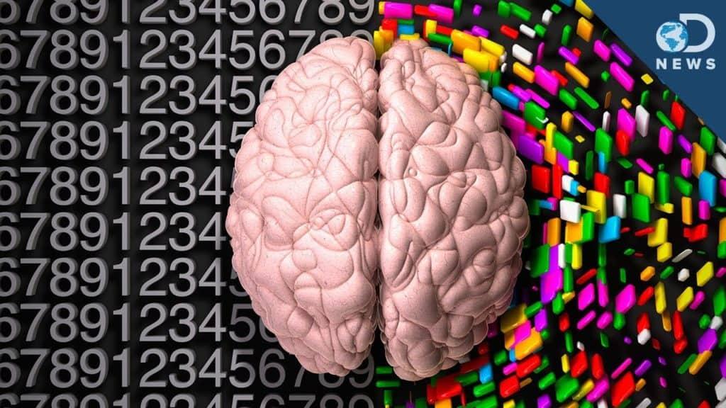 L'unicità della persona, split brain, morale e religione