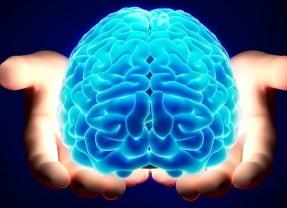Verso una concezione unitaria di cervello e mente