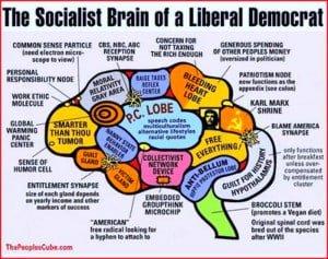 liberal_brain