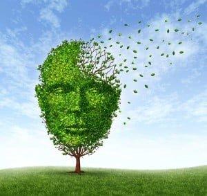 Human-Dementia-Problems
