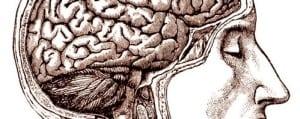 emisfero-cervello-e1369646262275-1764x700
