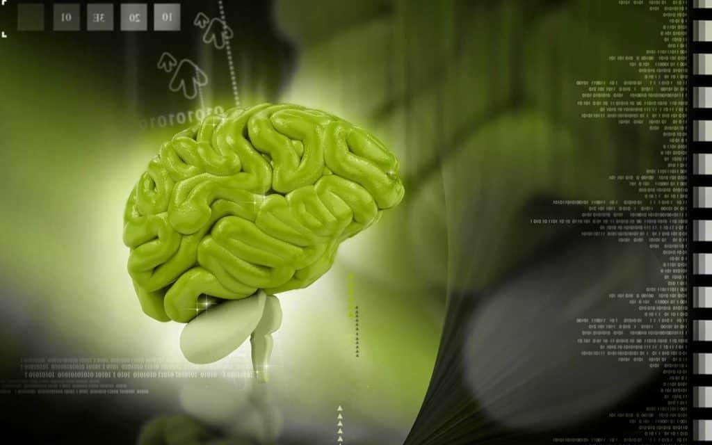 Principi di neuroscienze, la nuova opera di Kandel