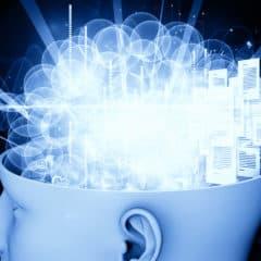 Il cervello quantico e la comunicazione di biofotoni