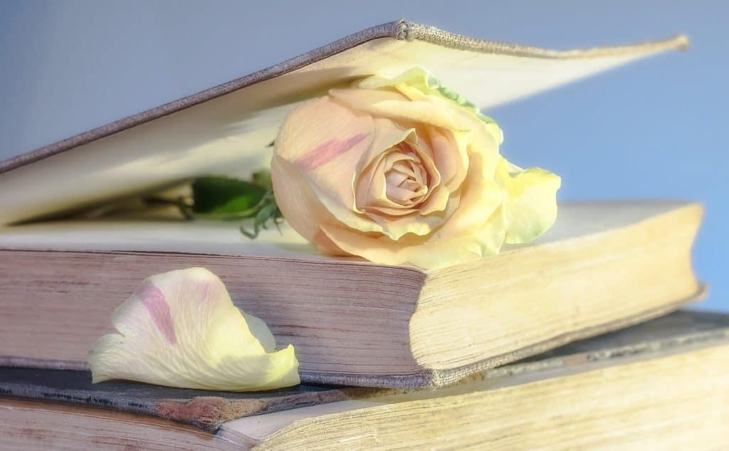 Elogio del libro e della lettura