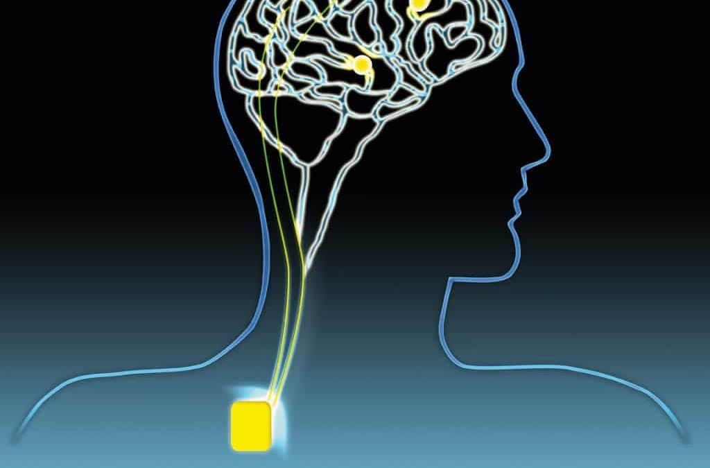 Stimolazione Magnetica Transcranica e Afasia