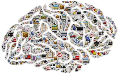 È il cervello che cambia la nostra vita?