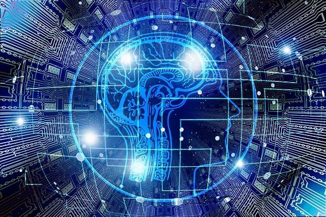 Sviluppo del Cervello
