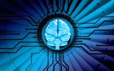 Verso cervelli più potenti e con più memoria?