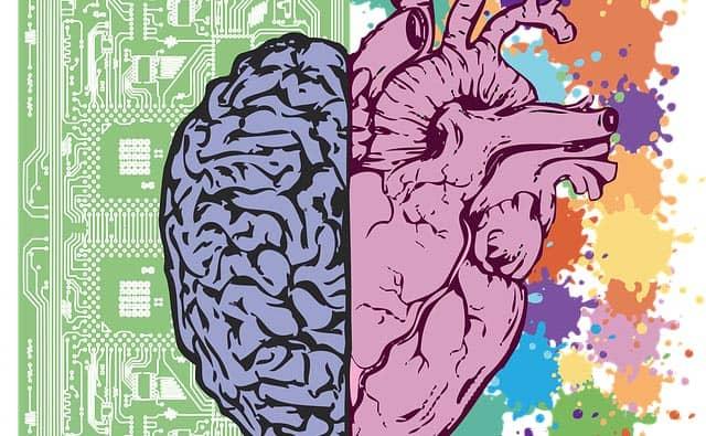 emozioni e cervello