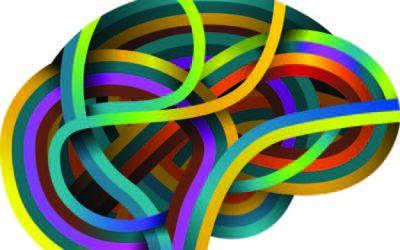 Il Neuromarketing dei sensi