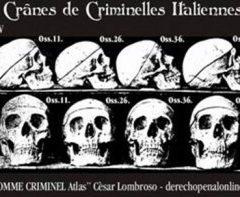 L'apporto delle Neuroscienze alla Criminologia